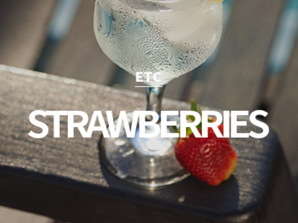 [USA] strawberries & champagne / 스트로베리 샴페인