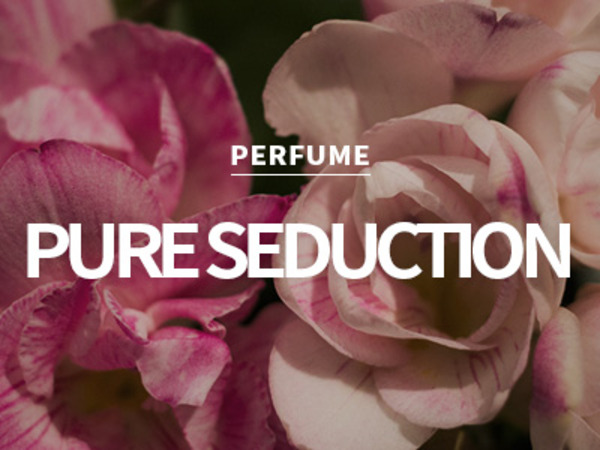 [USA] pure seduction / 퓨어 세덕션
